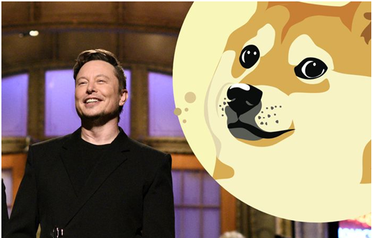Doge Elon